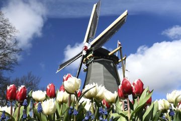 каникулы в амстердаме