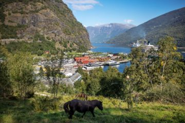 Согнефьорд Норвегия